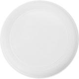 Frisbee (V8650-02)