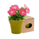 Ekologiczna doniczka do kwiatów (V8530-06)